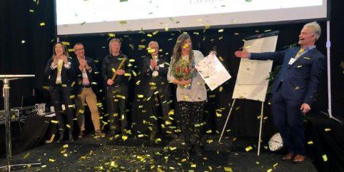 vinnaren av narrenpriset 2017 har korats