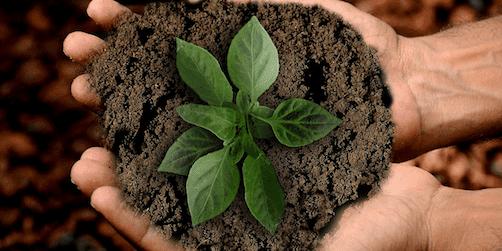 hållbara hundratals tips för dig som skapar event och konferenser