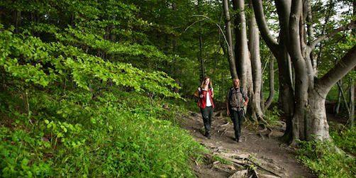 De har utsetts till sveriges första hållbara region